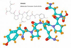 Clasificación de las biomoléculas